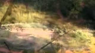 DUNIA YANG TERLUPA - PETERPAN (VISUAL INTERPRETATION)
