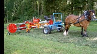Schmitz Pferdezugtechnik :)