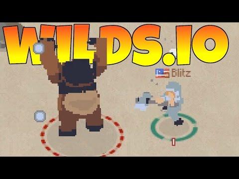Wilds.io Video 1