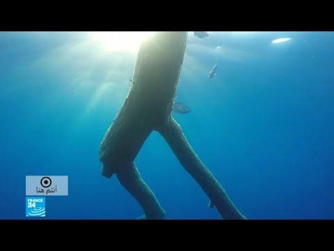 العرب اليوم - شاهد: بحر پيلاغوس بقعة متناثرة في الأبيض المتوسط بحجم بلد بأكمله