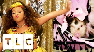 Animal Pageant Takeover | Toddlers And Tiaras