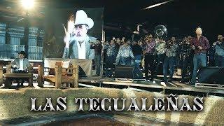 Las Tecualeñas (En Vivo) - Joel Elizalde (Video)