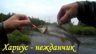 Рыбалка в костромской области на малых реках