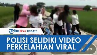 Polsek Bangsal Selidiki Video Viral Tawuran Diduga Dilakukan 10 Siswi SMA di Mojokerto