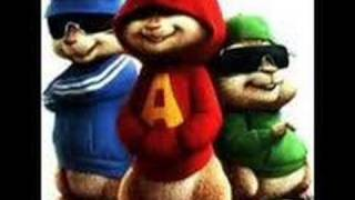 frou frou-close up-chipmunk