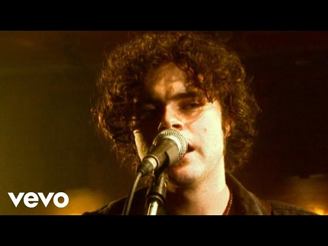 Everybody Wants - Paddy Casey