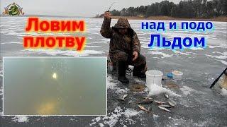Ловля плотвы из подо льдами