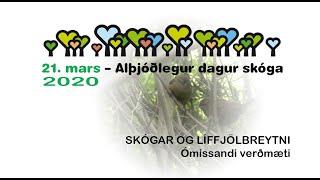 Alþjóðlegur dagur skóga 2020