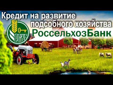 Кредит на развитие личного подсобного хозяйства в РоссельхозБанке. Условия и проценты