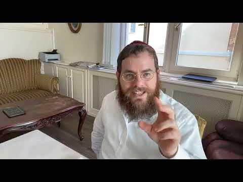 Sábát 77 – Napi Talmud 150 – Az Örökkévaló teremtésében semmi sem felesleges #bor #reviit #teremtés