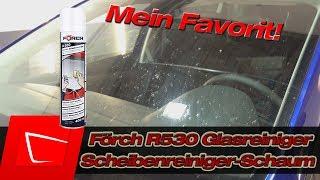 Mein Lieblings-Glasreiniger - Förch Scheibenreiniger-Schaum R530 im Test auf richtig viel Insekten!
