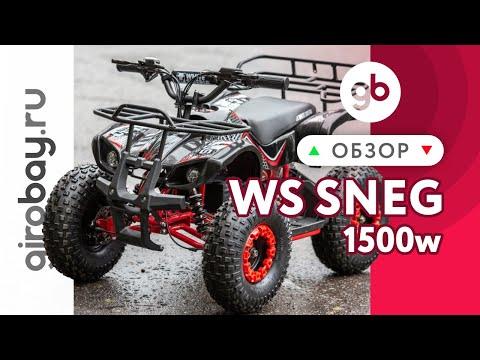 Электроквадроцикл WHITE SIBERIA SNEG 1500w (48V12Ah 0.15) 0.1
