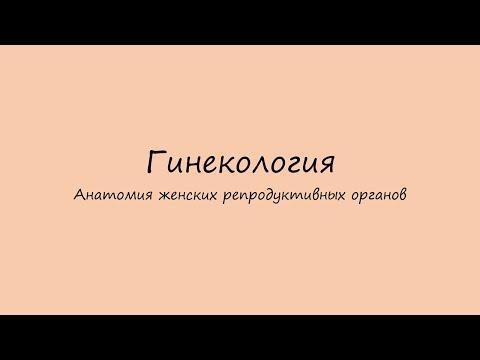 Возбудитель киев женский в аптеках