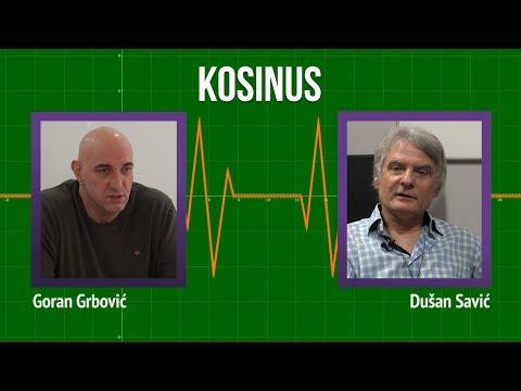 Kosinus: Nema kompromisa za Kosovo, referendum je izbegavanje odgovornosti