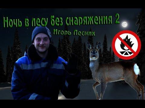 Ночь зимой в лесу без снаряжения 2