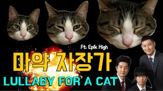 터키 고양이도 잠재우는 에픽하이 Lullaby For A Cat I Epik High's Purrfect lullaby puts a cat to sleep