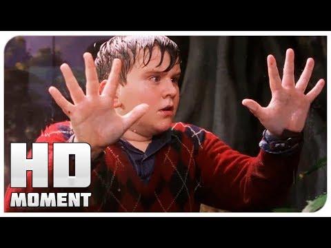 Гарри Поттер в зоопарке - Гарри Поттер и философский камень (2002) - Момент из фильма