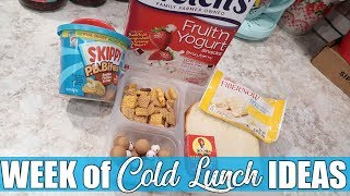 Cold Lunch Ideas for Anyone   Money Saving Lunches for On the Go