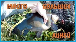 Ловля рыбы на бабку