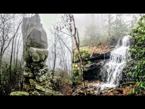 Off-Trail Solo Hike: COURTHOUSE ROCK & Quilliams Cave (Great Smoky Mountains)