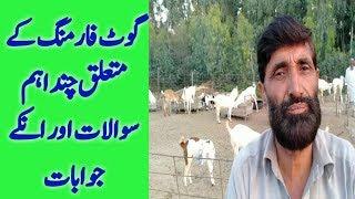 goat farming in pakistan punjab - TH-Clip