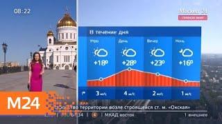 """Утро"": в среду погоду в Москве определит антициклон - Москва 24"