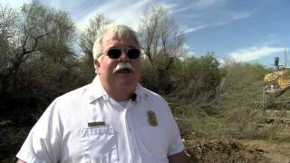 Salt Cedar dangers and removal