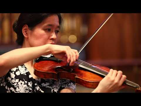 Solo Violin Concert