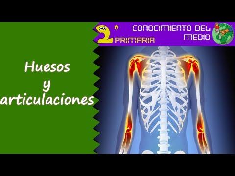 Síntomas de la cirugía de menisco de la rodilla