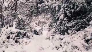 preview picture of video 'Randonnée Blida vers Chrea'