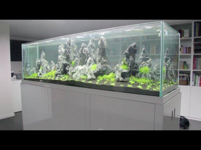 Aquaeden - Montagem de um Aquascape 200x60x60 cm - 720l