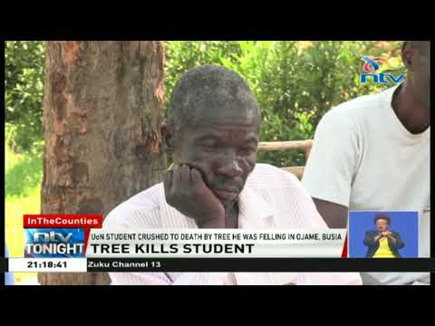 UoN student crushed to death by tree he was cutting down