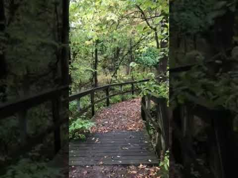 Video Of Grant Nature Park, IA