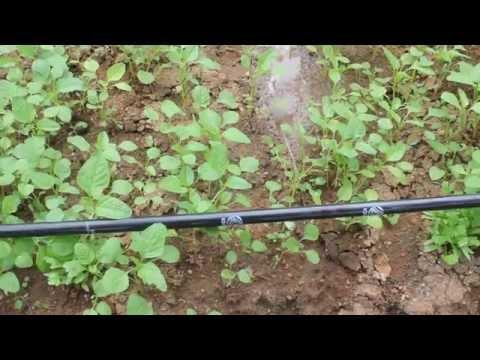 Plastic Water Drip Irrigation Tube