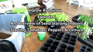 Grow as I Grow Ep-1: An Overview on Starting Vegetables Indoors & Seed Starting Tomatoes & Peppers