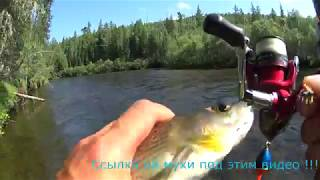 Рыбалка на енисее в июле хариус