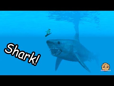 Giant Shark On Boat Swimming In Water Roblox Cookie Swirl C