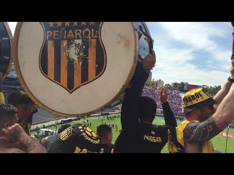 """""""Entrada bombos peñarol vs nacional 2019"""" Barra: Barra Amsterdam • Club: Peñarol"""