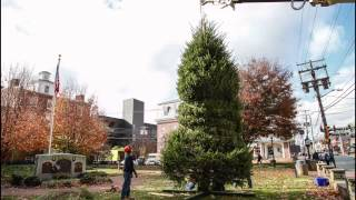 Newark's Christmas tree set up in 40 seconds