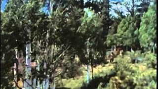 Daniel Boone Season 2 Episode 6 Full Episode