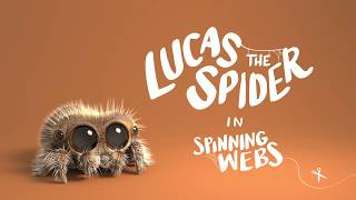 Lucas the Spider - Spinning Webs - Video Youtube