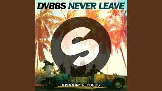 Never Leave (Radio Edit)