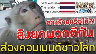 ส่องคอมเมนต์ชาวโลก-หลังได้ดูคลิป'ลิง'ยกพวกตีกันเดือดกลางเมืองลพบุรี