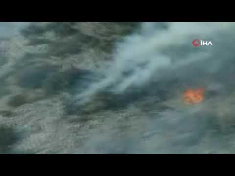 Alanya'daki orman yangınında 6 hektarlık makilik alan zarar gördü