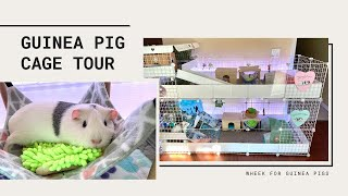 Guinea Pig Cage Tour - Stacked C&C Cage