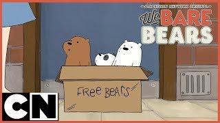 We Bare Bears | Potty Time | Cartoon Network
