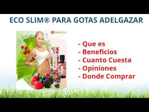 El programa de los entrenamientos y una alimentación para las muchachas para el adelgazamiento