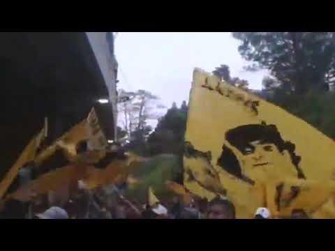 """""""PREVIA AURINEGRA // AVALANCHA SUR 1997 CAPOS DE VENEZUELA"""" Barra: Avalancha Sur • Club: Deportivo Táchira"""