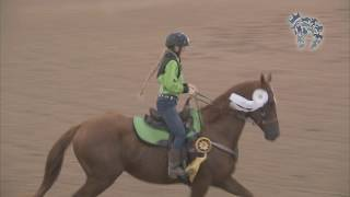 2019 Thoroughbred Makeover Finale: Barrel Racing