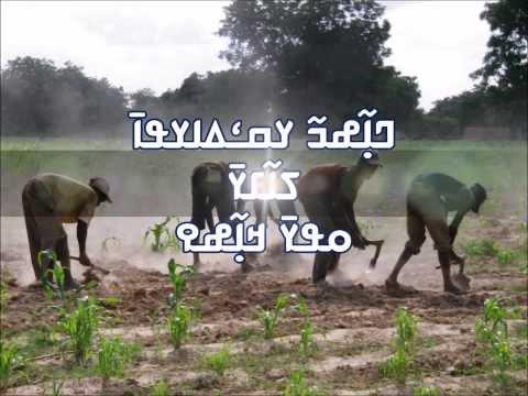 Nanfo Ismaila Diaby - Eli kanfo